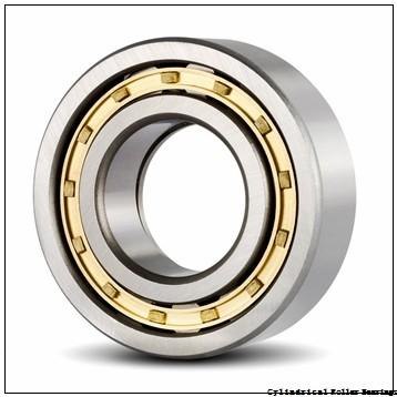 0.7874 in x 1.8504 in x 0.7087 in  NTN NJ2204EC4 Cylindrical Roller Bearings