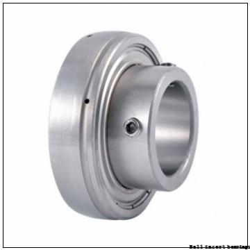 INA GE75-KRR-B Ball Insert Bearings