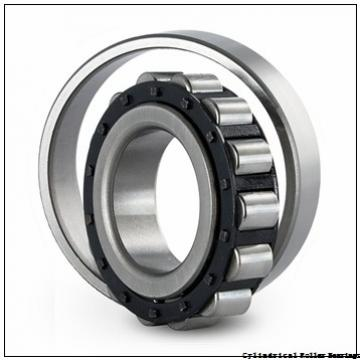 45 mm x 85 mm x 19 mm  NSK N 209 M C3 Cylindrical Roller Bearings