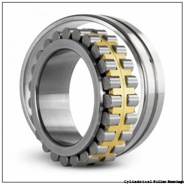 70 mm x 125 mm x 24 mm  NSK N214W C3 Cylindrical Roller Bearings