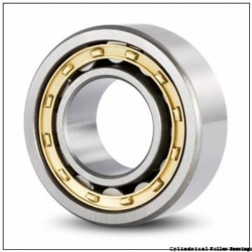 55 mm x 90 mm x 18 mm  NSK NU 1011 M Cylindrical Roller Bearings