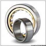 Link-Belt MU1209TV Cylindrical Roller Bearings