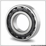 Link-Belt MU5212TV Cylindrical Roller Bearings