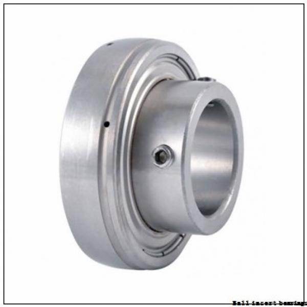 AMI UC218 Ball Insert Bearings #1 image