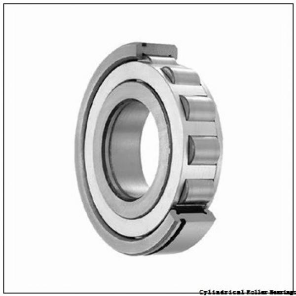 75 mm x 130 mm x 31 mm  NSK NU 2215 W Cylindrical Roller Bearings #2 image